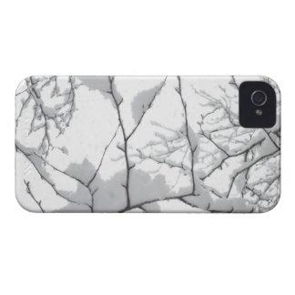 Nevadas iPhone 4 Case-Mate Fundas