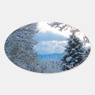 Nevado Colorado Pegatina Ovalada