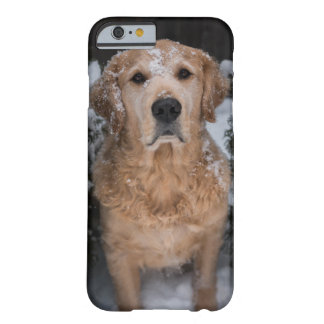 Nevado Joey Funda Barely There iPhone 6