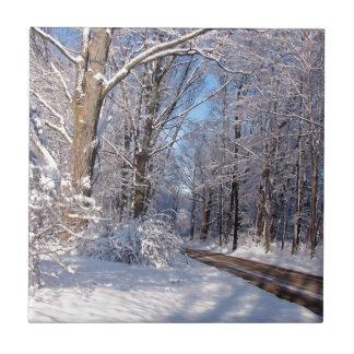 Nevado Michigan rural Azulejos
