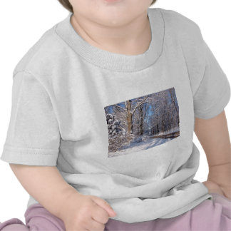 Nevado Michigan rural Camiseta