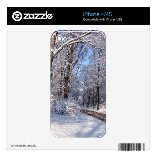 Nevado Michigan rural iPhone 4 Skins