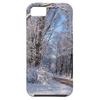 Nevado Michigan rural iPhone 5 Cárcasa