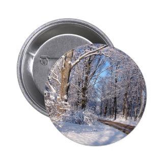 Nevado Michigan rural Pin