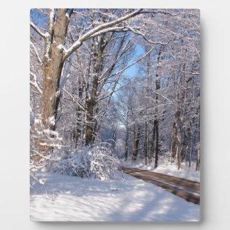Nevado Michigan rural Placa De Madera