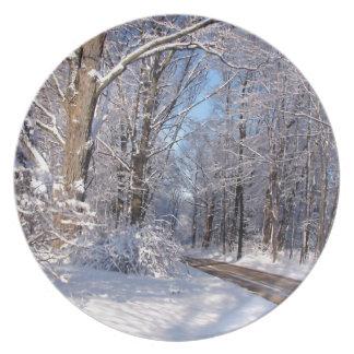 Nevado Michigan rural Plato De Comida