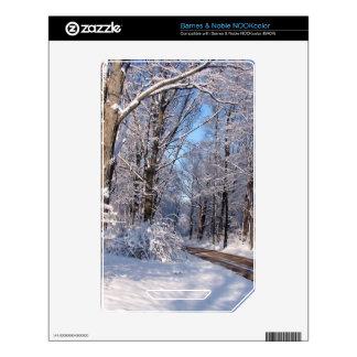 Nevado Michigan rural Skins Para elNOOK Color