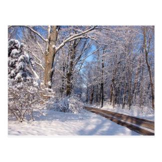 Nevado Michigan rural Tarjetas Postales