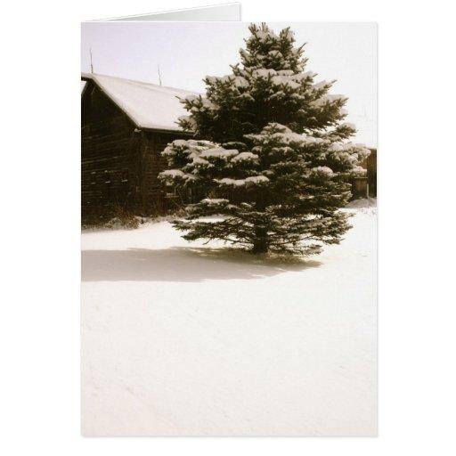 Nevado Vermont Tarjetón
