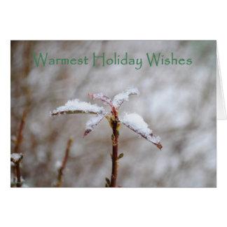 Nevado y frío tarjeta de felicitación