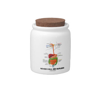 Never Call Me Gutless (Digestive System Humor) Candy Jars