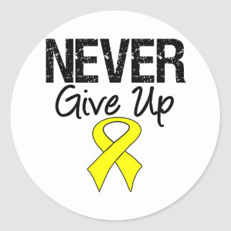 Never Give Up (Bladder Cancer) Classic Round Sticker