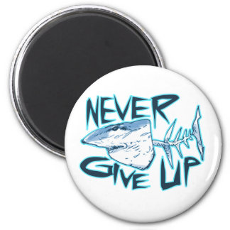 never give up great white shark magnet