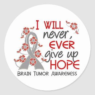 Never Give Up Hope 4 Brain Tumor Classic Round Sticker