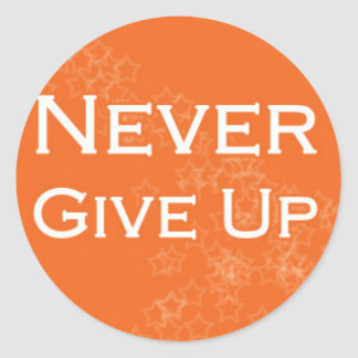 Never Give Up on Orange Classic Round Sticker