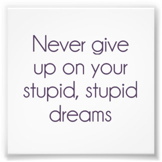 Never Give Up On Your Stupid Dreams Photo Print