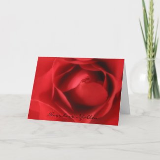 Never have I fallen Greeting Card