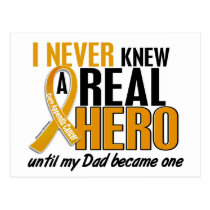 Never Knew a Hero 2 Dad Appendix Cancer Postcard