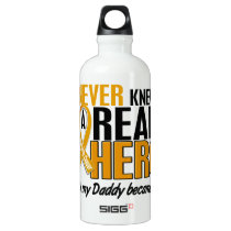 Never Knew a Hero 2 Daddy Appendix Cancer Aluminum Water Bottle