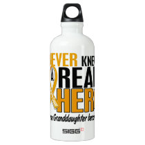 Never Knew a Hero 2 Granddaughter Appendix Cancer Aluminum Water Bottle