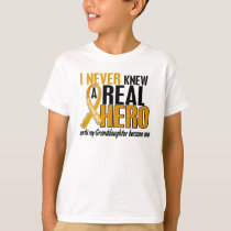 Never Knew a Hero 2 Granddaughter Appendix Cancer T-Shirt