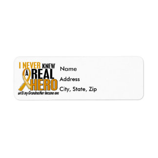 Never Knew a Hero 2 Grandmother Appendix Cancer Label