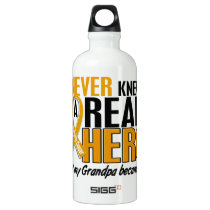 Never Knew a Hero 2 Grandpa Appendix Cancer Water Bottle