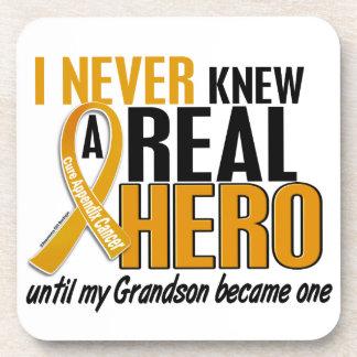 Never Knew a Hero 2 Grandson Appendix Cancer Drink Coaster