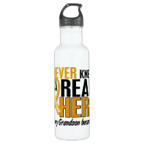 Never Knew a Hero 2 Grandson Appendix Cancer Water Bottle