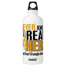 Never Knew a Hero 2 Great Grandpa Appendix Cancer Aluminum Water Bottle