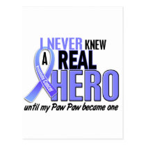 Never Knew A Hero 2 Paw Paw Prostate Cancer Postcard
