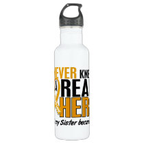Never Knew a Hero 2 Sister Appendix Cancer Stainless Steel Water Bottle