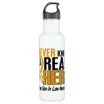 Never Knew a Hero 2 Son-In-Law Appendix Cancer Stainless Steel Water Bottle