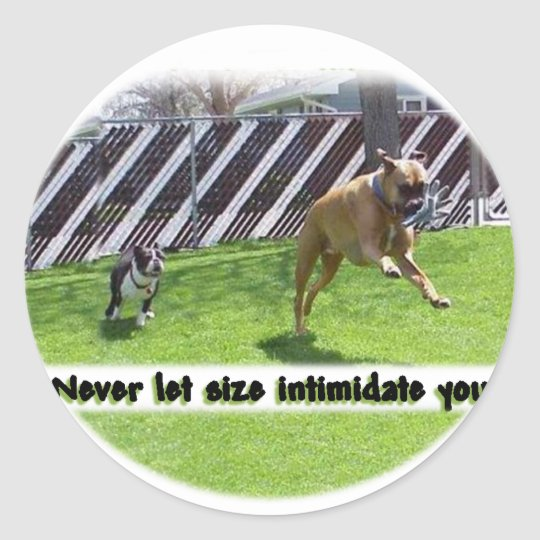 Never Let Size Intimidate Classic Round Sticker