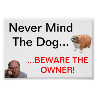 Never Mind the Dog Poster