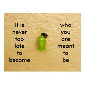 Never Too Late To Become Who You Are Meant To Be Postcard