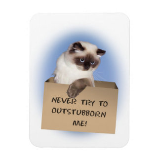 Never try to out-stubborn me! vinyl magnet