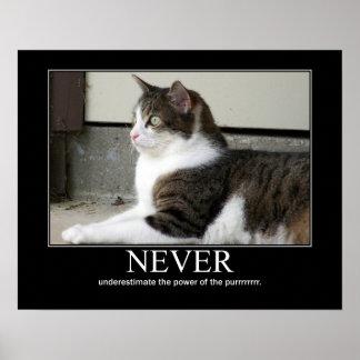 Never Underestimate Cat Artwork Poster
