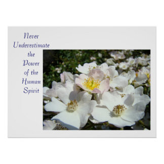 Never underestimate the Power of the Human Spirit Poster