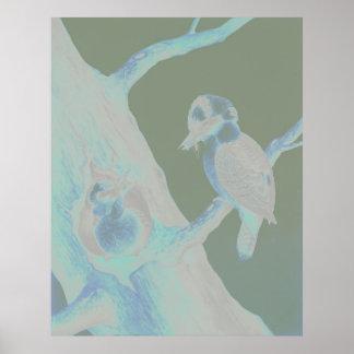 Neville HP Cayley - Laughing Kookaburra Poster