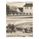 Nevis, Green residences, farms Postcard