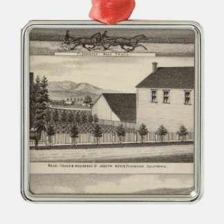 Nevis, Green residences, farms Square Metal Christmas Ornament