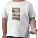 Nevis, residencias verdes, granjas camiseta
