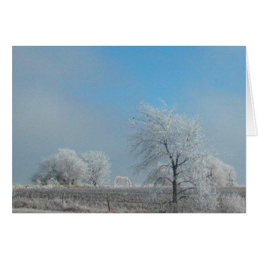 ¡Nevó hoy! Tarjeta Pequeña