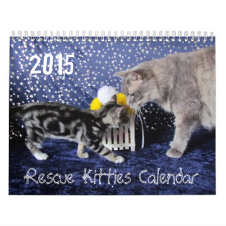 NEW 2015 Rescue Kitty Calendar - WITH AUG BIRTHDAY