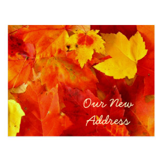 New Address Autumn Postcard