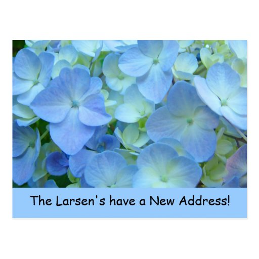 New Address postcards Announcements Blue