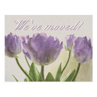 New address postcards with purple tulips print