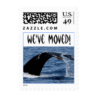 New Address Whale in Ocean Stamps