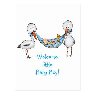 New Baby Boy - Baby Shower Gift Postcard